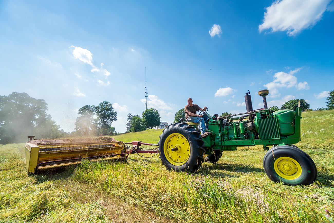 Mowing Hay