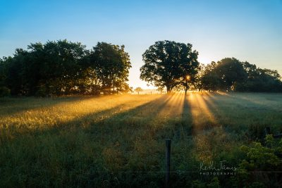 Landscape Photography: Sunrise over a Pasture