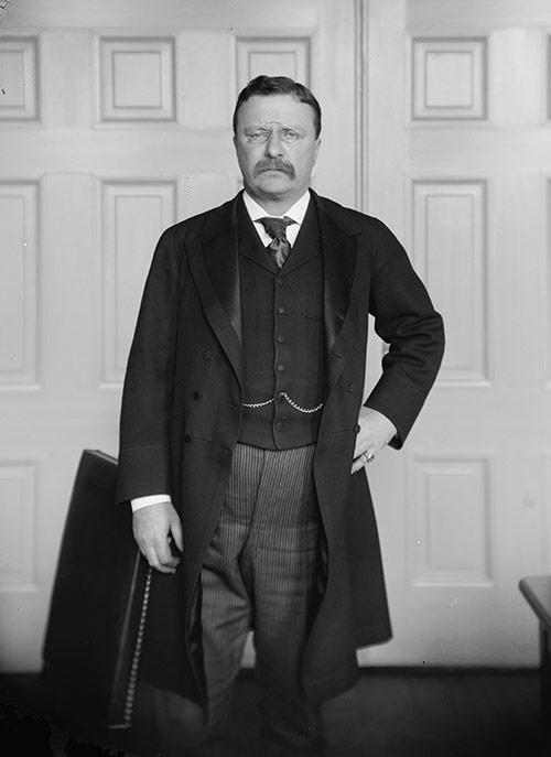 Teddy Roosevelt (before restoration)